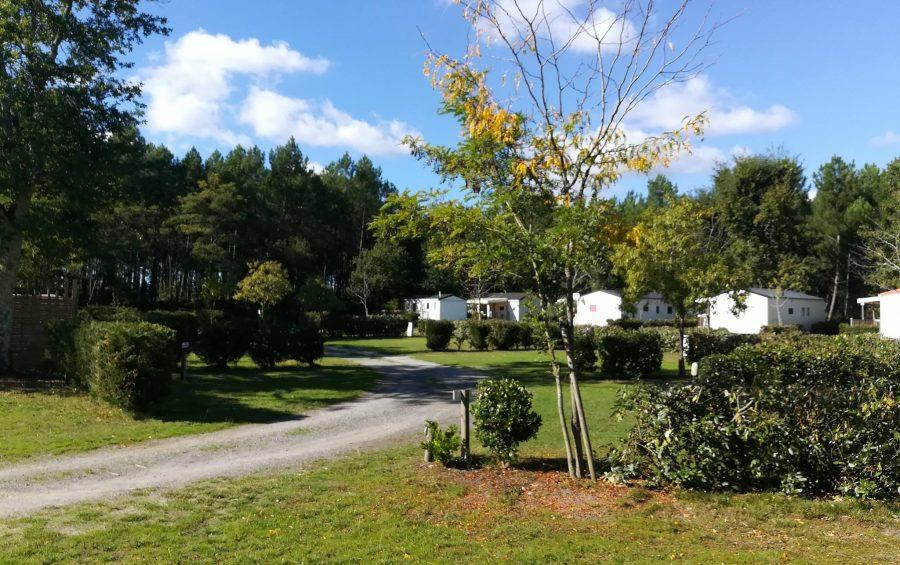 camping Landes pas cher